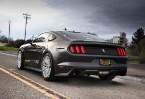 Mustang Detail